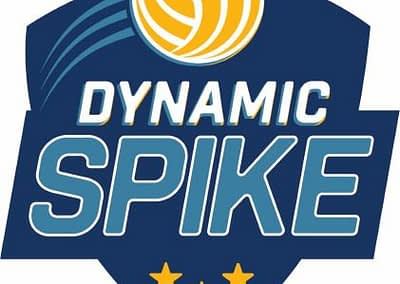 The DynamicSpike Volleyball logo