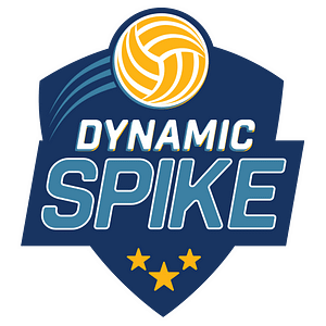 dynamic spike site identity logo