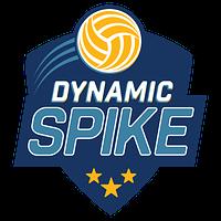 dynamic spike site identity logo